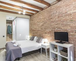 Sants studio apartments for rent