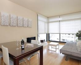 Olympic Village 2 bedroom apartment