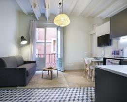 Beautiful one-bedroom in Gothic quarter