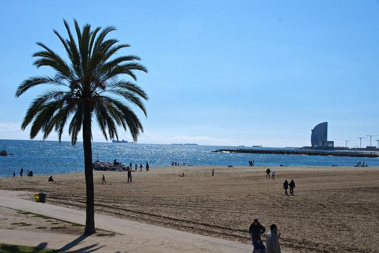 The beach is few minutes from the flat  by Bus or by Metro.