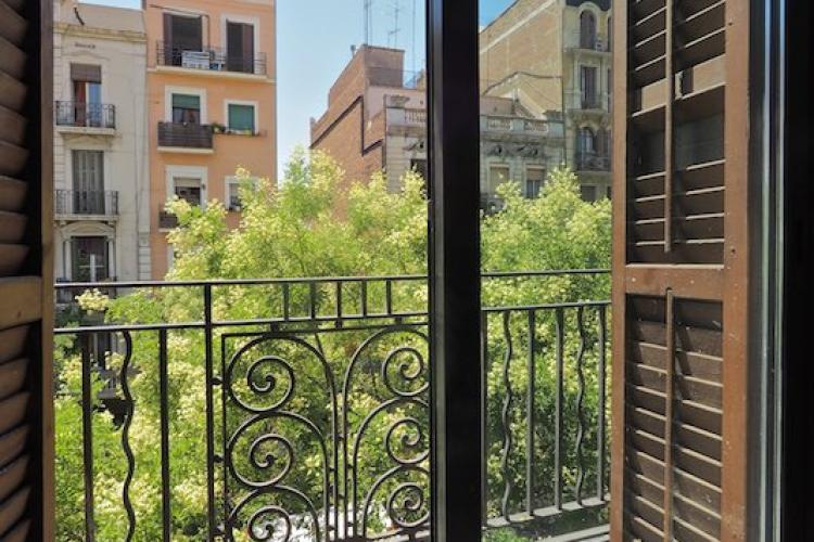 The neighborhood is characterized by its abundance of fresh green trees and beautiful architecture.