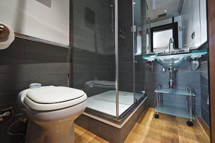This bathroom comes with a WC, fully refurbished and modern shower and gorgeous glass sink.
