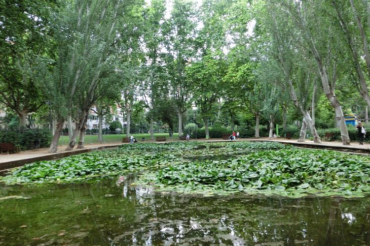 Turo Park nearby
