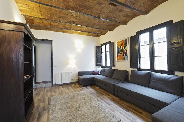 The living room comes with two windows with beautiful dark wooden frames.