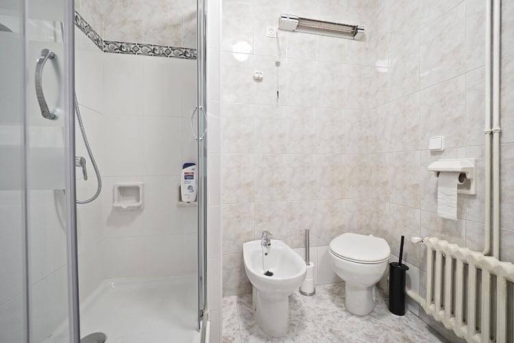 The bathroom comes with a standing shower.