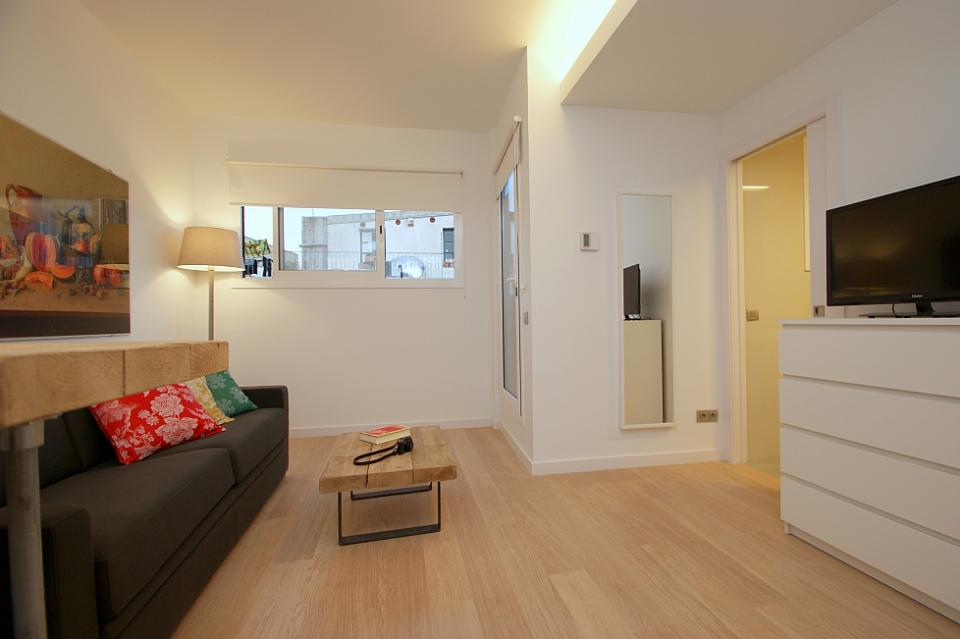 beautiful open concept studio apartment ferran st